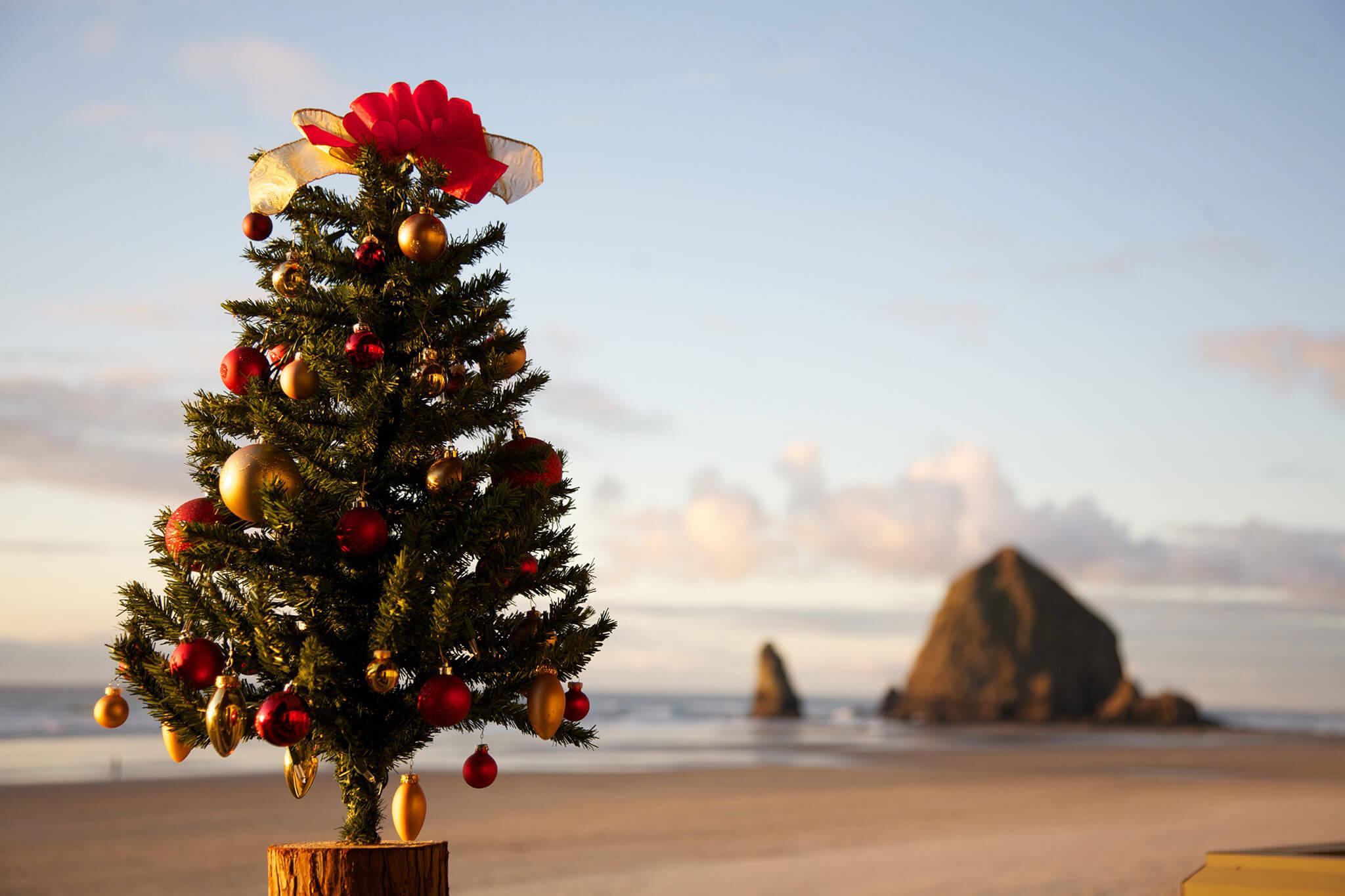 Cannon-Beach-Christmas-Tree-min - Stephanie Inn - Oceanfront Hotel in Cannon Beach, Oregon